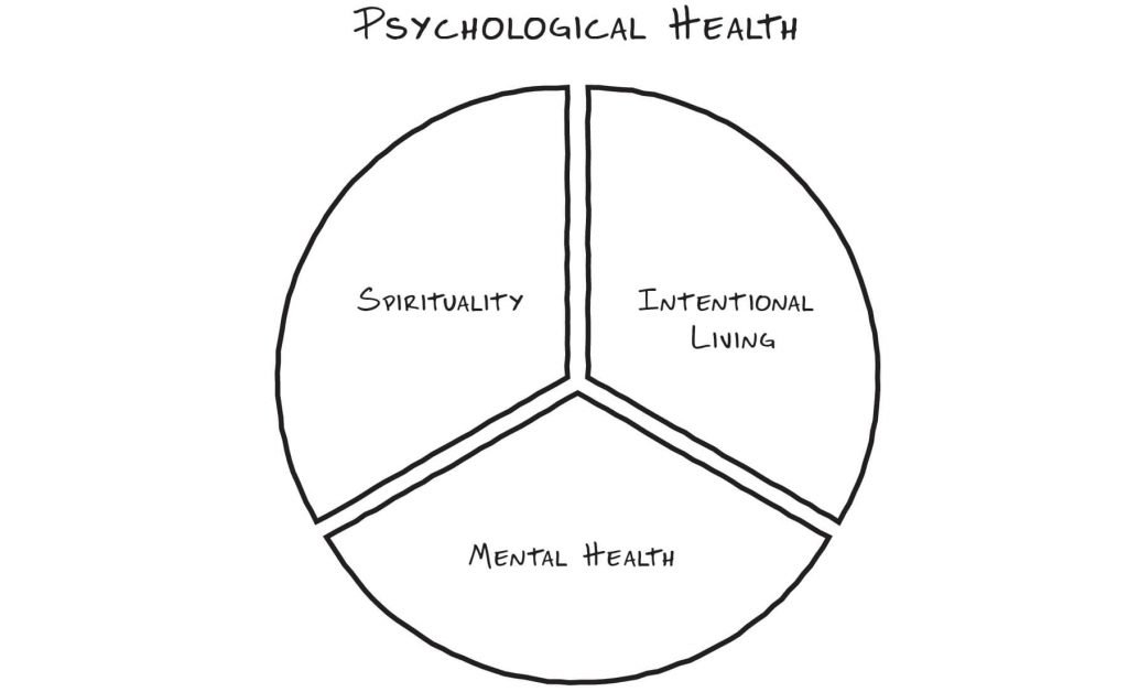 Psychological Health - The Sobriety Success Method